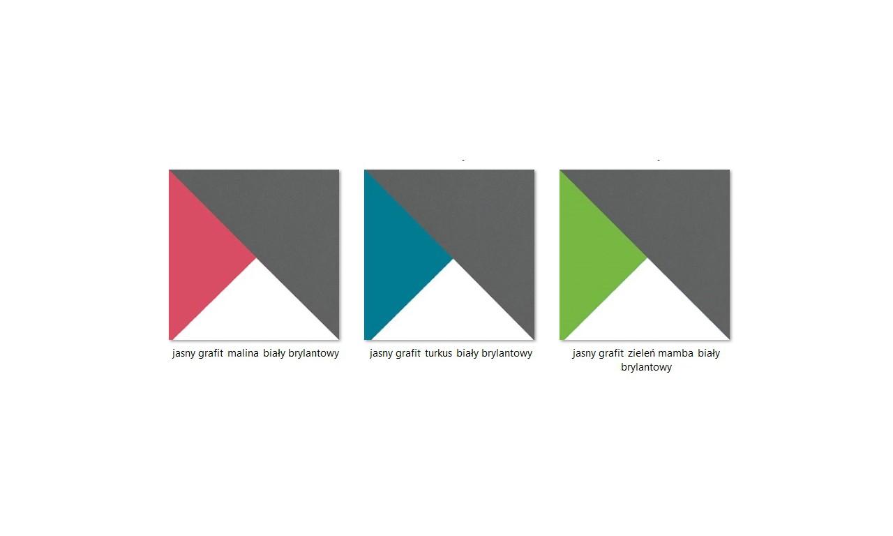 Zestaw w różnych kombinacjach kolorystycznych do pokoju starszego dziecka FUTURO C