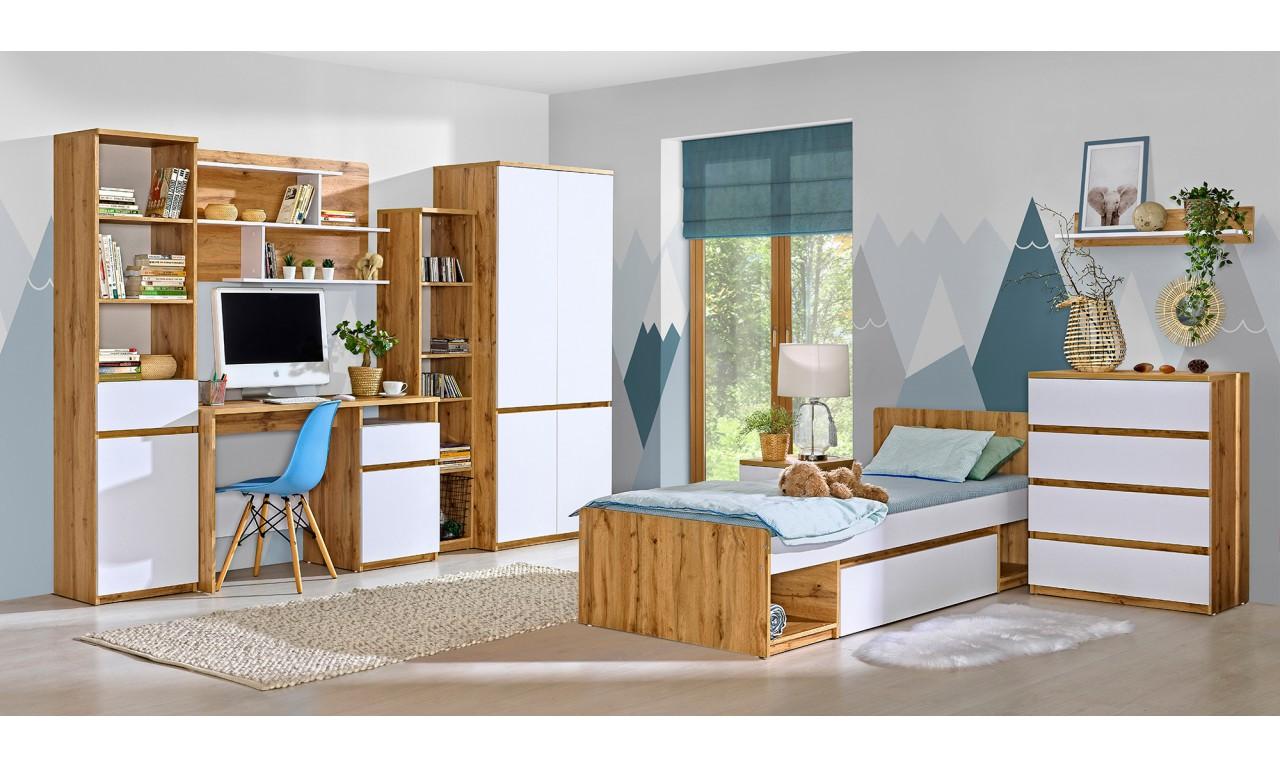 Szafa w stylu nowoczesnym, dostępna w dwóch propozycjach kolorystycznych ARCA AR1
