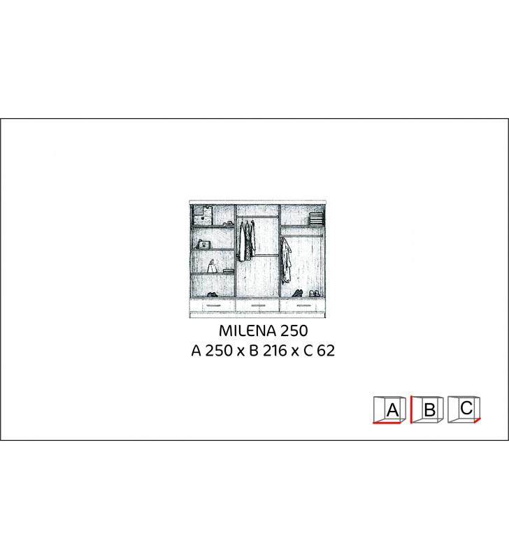 Szeroka szafa (250 cm) przesuwna z lustrem w kilku propozycjach kolorystycznych Milena 250